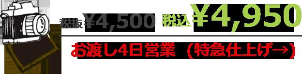 税抜¥4,500 税込¥4,950